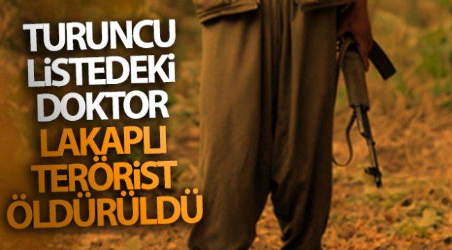 Tunceli'de Turuncu Liste'de yer alan 'Doktor' lakaplı terörist öldürüldü
