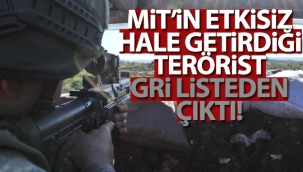 MİT'in etkisiz hale getirdiği terörist gri listeden çıktı