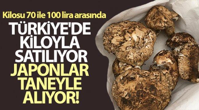 Türkiye'de kiloyla satılıyor, Japonlar taneyle alıyor