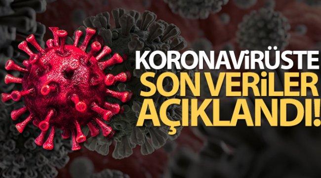 Türkiye'de son 24 saatte 7.325 koronavirüs vakası tespit edildi