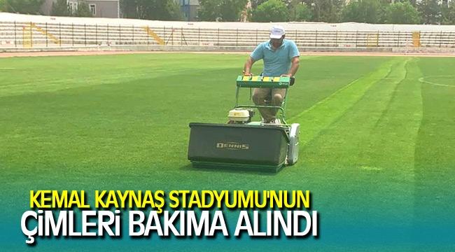 KEMAL KAYNAŞ STADYUMU'NUN ÇİMLERİ BAKIMA ALINDI