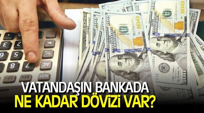 Vatandaşın bankalarda ne kadar dövizi var?