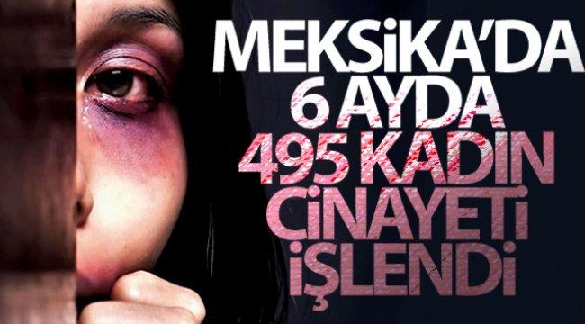 Meksika'da 6 ayda 495 kadın cinayeti işlendi