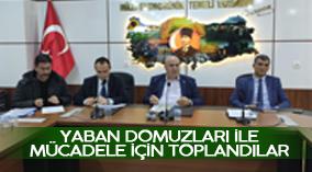 Karaman'da Ziraat Odası Başkanlığında yaban domuzuyla etkili mücadele için bir toplantı yapıldı
