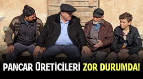 PANCAR ÜRETİCİLERİ ZOR DURUMDA!