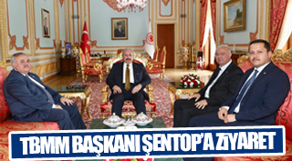 TBMM BAŞKANI ŞENTOP'A ZİYARET